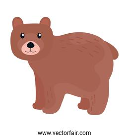 bear grizzly beast animal wild icon