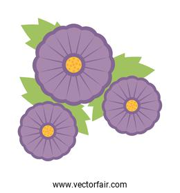 purple flowers with leaves, colorful design