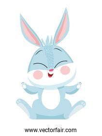 happy little rabbit seated cute character