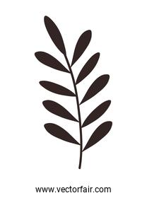 leafs branch foliage silhouette icon