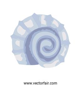 snail sea shell color lilac isolated icon