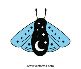 esoteric insect icon