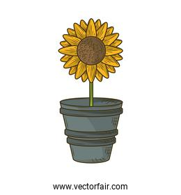 potted sunflower decoration