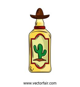 mexican tequila bottle