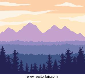 mountains and forest