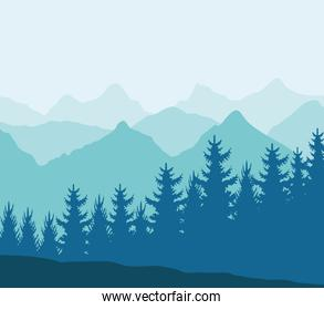 mountains and pines