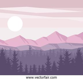 forest and mountains