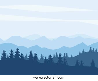 pines and mountains