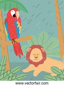 lion and macaw
