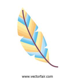 pastel colors feather