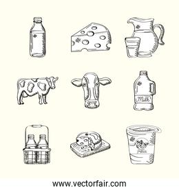 nine dairy products