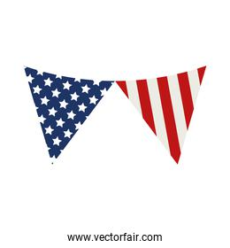 decorative usa pennants
