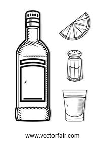 tequila related icons