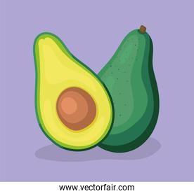 healthy avocado illustration