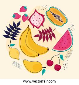 fruits and leafs