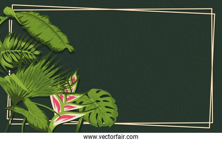 heliconia and leaves