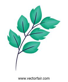 emerald leaves illustration