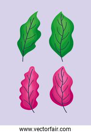 four leaves icons