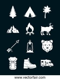 camp and forest