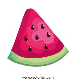 isolated watermelon fresh fruit