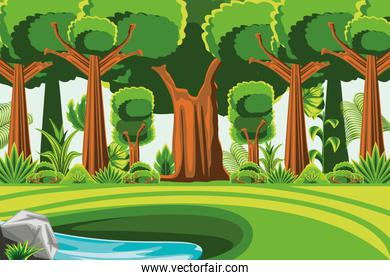 forest trees meadow water