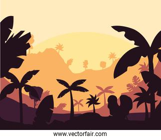 yellow tropical forest