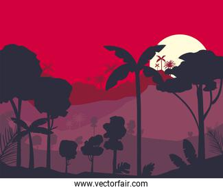 red tropical forest