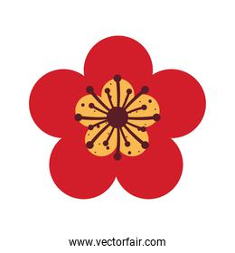 red chinese flower