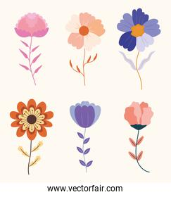 beautiful flowers icons