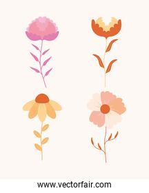 four cute flowers