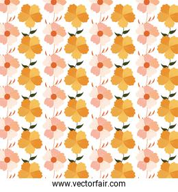 wallpaper of flowers