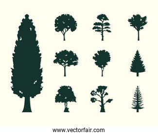 trees icon collection