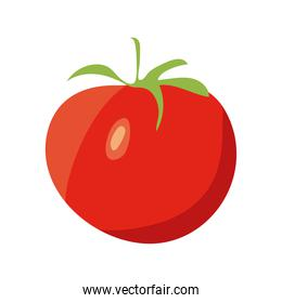 tomato red vegetable
