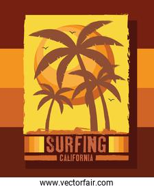 surfing square patch