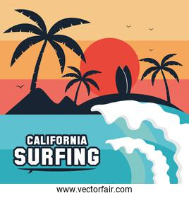 california surfing scene