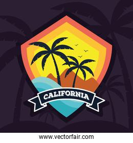 surf california patch