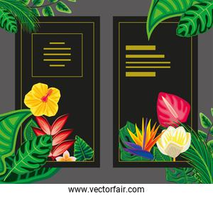 tropical banners design