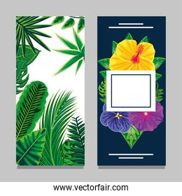 tropical banner layout