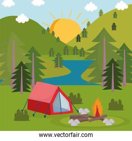 camping forest panoramic