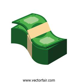 stack banknotes isometric