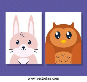 cute rabbit and owl