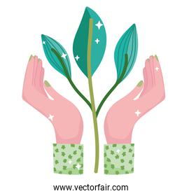 ecology hand with plant