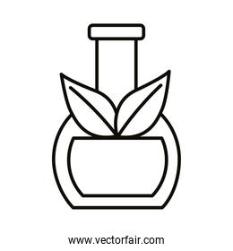 test flask with leafs