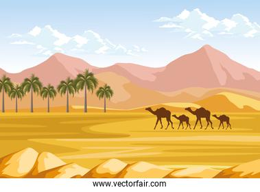 palms and camels