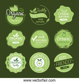 Organic natural labels icon group