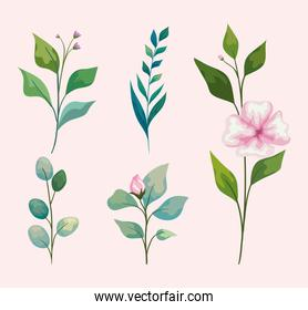 flowers with leaves icon set