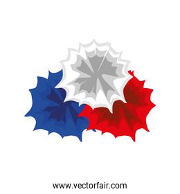 spots color french flag