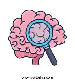 brain and loupe