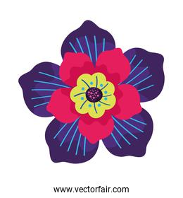 flower with petals