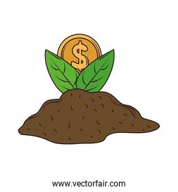 plant coin on ground